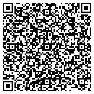 QR-код с контактной информацией организации Елена, ИП
