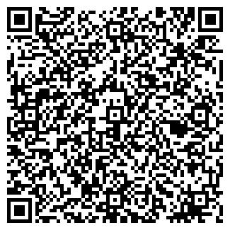 QR-код с контактной информацией организации М13, ИП