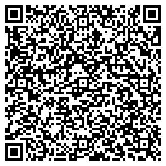 QR-код с контактной информацией организации Бухгалтер, ИП
