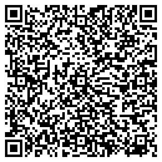 QR-код с контактной информацией организации Matryoshka