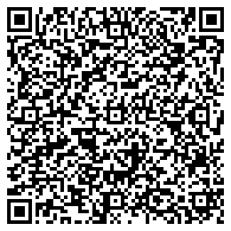 QR-код с контактной информацией организации ДСТ ГРУПП