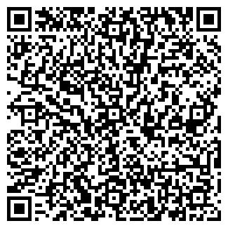 QR-код с контактной информацией организации ВИЗА ГРУП, ООО