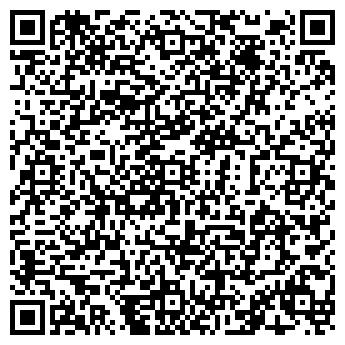 QR-код с контактной информацией организации ВОЛОДИМИР-ХОЛОД, ЧП