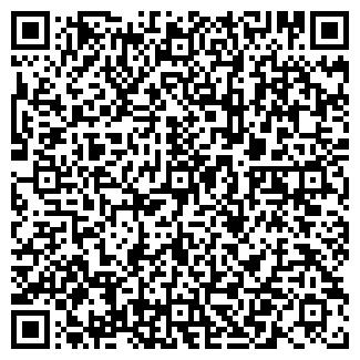 QR-код с контактной информацией организации ДЕМО, МП, ООО
