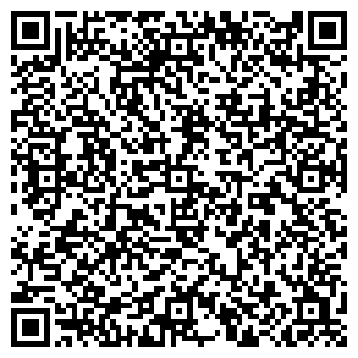QR-код с контактной информацией организации Виза Плюс, ООО