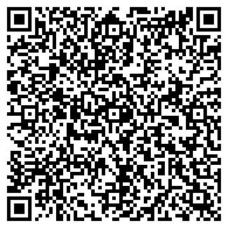 QR-код с контактной информацией организации Лига, ИП