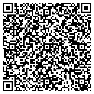 QR-код с контактной информацией организации Н-ТЕМА СЕРВИС, ЧП