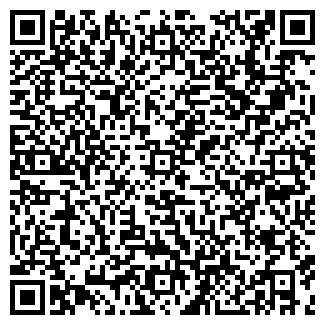 QR-код с контактной информацией организации ОНИКС-ЛТД, ООО