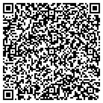 QR-код с контактной информацией организации ИП Дильманов