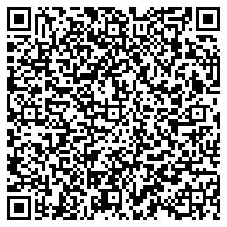 QR-код с контактной информацией организации V P M Group