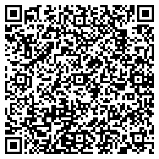 QR-код с контактной информацией организации ИП Dlyasebya
