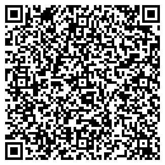 QR-код с контактной информацией организации MSG GmbH, ЧП