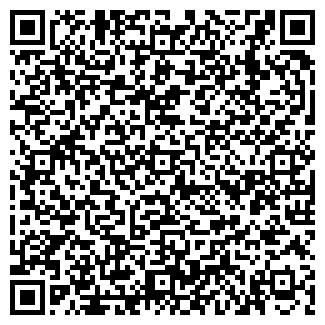 QR-код с контактной информацией организации Субъект предпринимательской деятельности VIP Technology