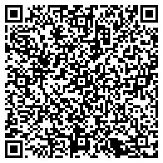"""QR-код с контактной информацией организации Общество с ограниченной ответственностью ТОО """"B-LITE"""""""