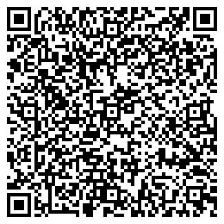 QR-код с контактной информацией организации ИП Багисова