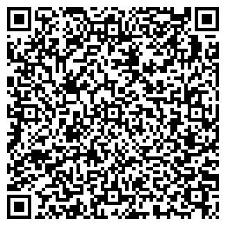 """QR-код с контактной информацией организации Субъект предпринимательской деятельности ИП """"Service"""""""