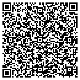 """QR-код с контактной информацией организации """"MeG@Di@G"""""""