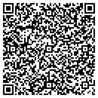 QR-код с контактной информацией организации Бинфорс, ОДО