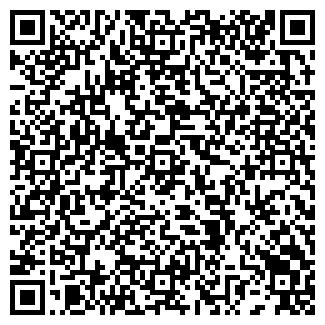 QR-код с контактной информацией организации Data Service
