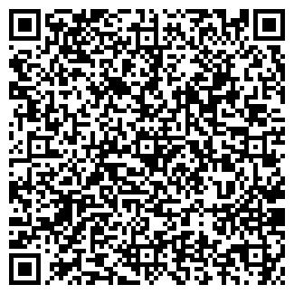 QR-код с контактной информацией организации АЛСЕТ, МАЛОЕ СП