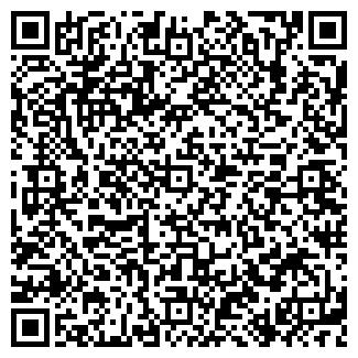 QR-код с контактной информацией организации Погодин, ИП