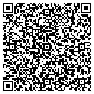 QR-код с контактной информацией организации ИП Измайлов