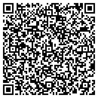 QR-код с контактной информацией организации ИП Спец Дизель
