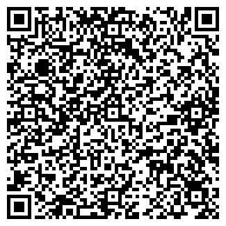 QR-код с контактной информацией организации ИП Едигеев