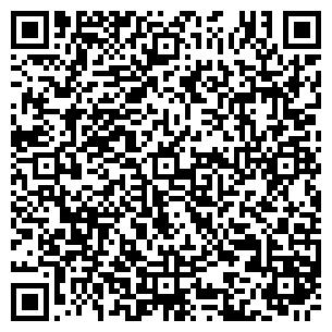 QR-код с контактной информацией организации ИП kELO GROUP