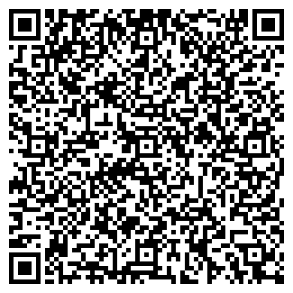 QR-код с контактной информацией организации Субъект предпринимательской деятельности Sample decor