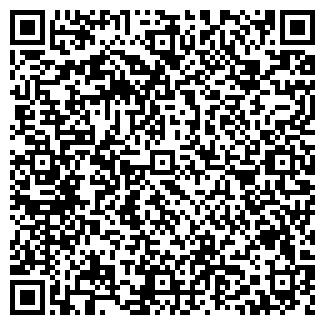 QR-код с контактной информацией организации Другая ИП Блинов