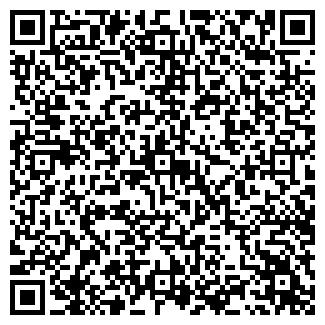 QR-код с контактной информацией организации Master Blesk
