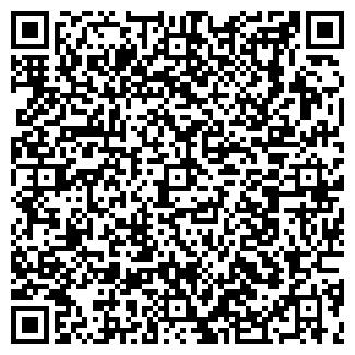QR-код с контактной информацией организации Ш.Е.Н., ООО