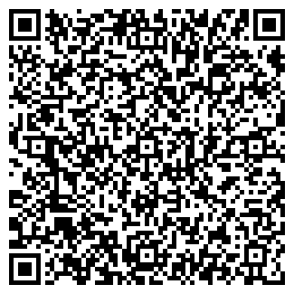 QR-код с контактной информацией организации Позолота, ЧП