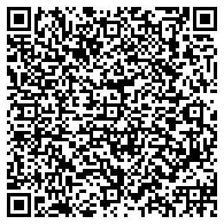 QR-код с контактной информацией организации Gryser, ООО