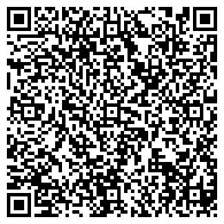QR-код с контактной информацией организации Толмачев,ИП