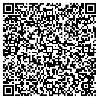 QR-код с контактной информацией организации Ногай,ИП