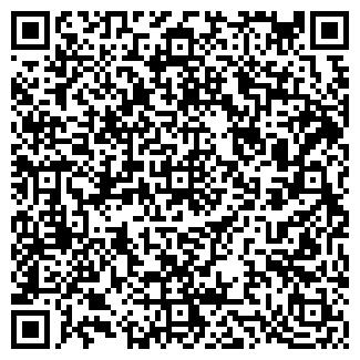 QR-код с контактной информацией организации Iness (Инесс), ИП