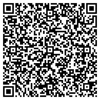 QR-код с контактной информацией организации Волкова, ИП