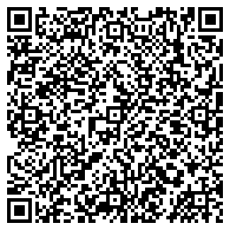 QR-код с контактной информацией организации Диалин, ТОО