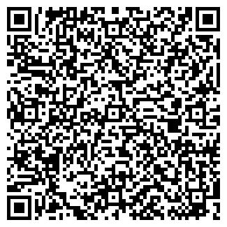 QR-код с контактной информацией организации DIlane, ИП