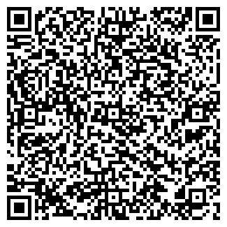 QR-код с контактной информацией организации ip svarchik, ИП