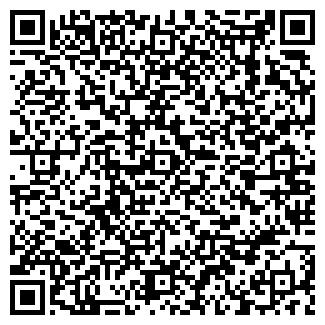 QR-код с контактной информацией организации Молянов, ИП