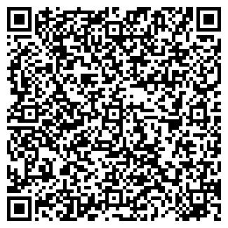 QR-код с контактной информацией организации ИП. massiv