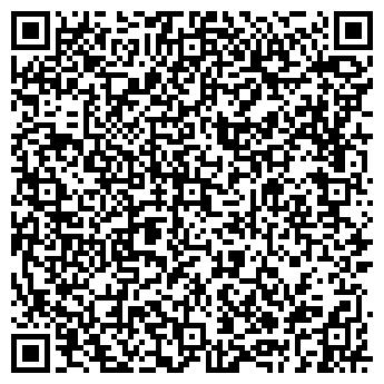 QR-код с контактной информацией организации Vladimirova Art Gallery, Частное предприятие