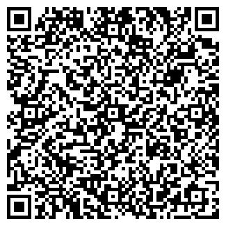 QR-код с контактной информацией организации Kindershop, ЧП