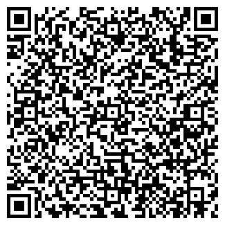 QR-код с контактной информацией организации ВЕМА, ПКФ, ООО