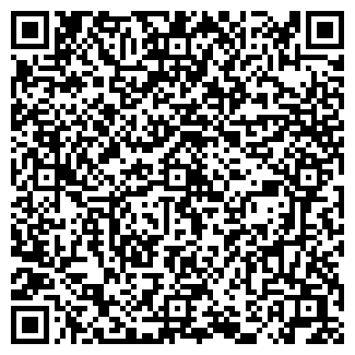 QR-код с контактной информацией организации Литвин, ЧП