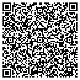 QR-код с контактной информацией организации Малиев, ИП