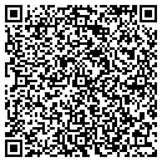 QR-код с контактной информацией организации Шатыгин В., ИП